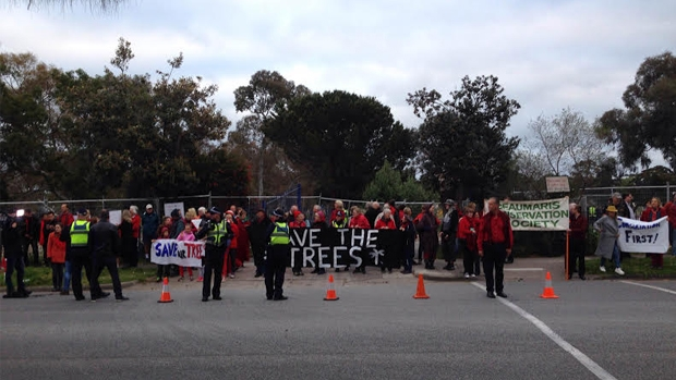 Article image for Local residents protest the removal of 229 trees from Beaumaris high school