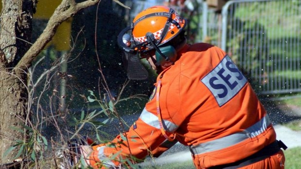 Article image for 5000 Victorian homes are without power due to damaging winds