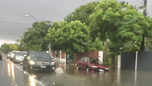 Article image for Flood warning issued around Elsternwick Canal as wild weather hits Melbourne