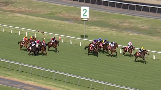 Article image for Jockey Josh Cartwright stood down after 'reckless' ride at Morphettville
