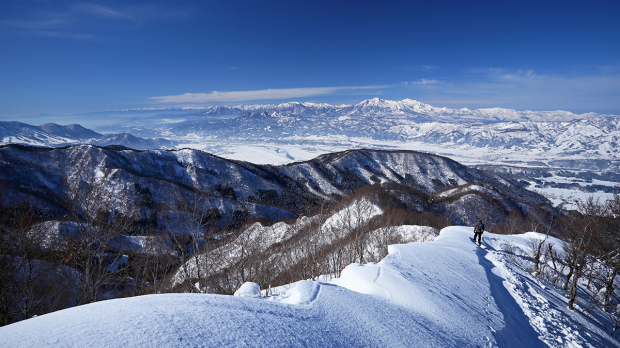 Article image for Australian mother and her three sons reportedly rescued from Japanese ski resort