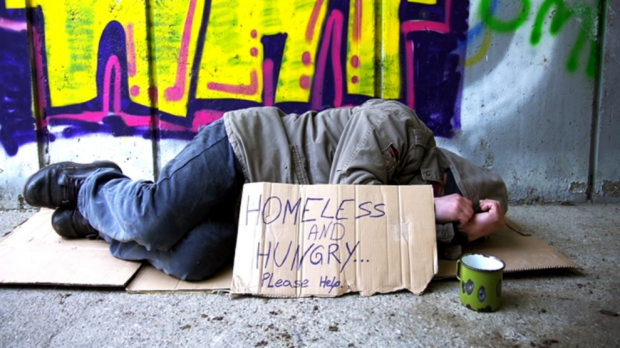 Article image for Tiny homes created to fix homelessness