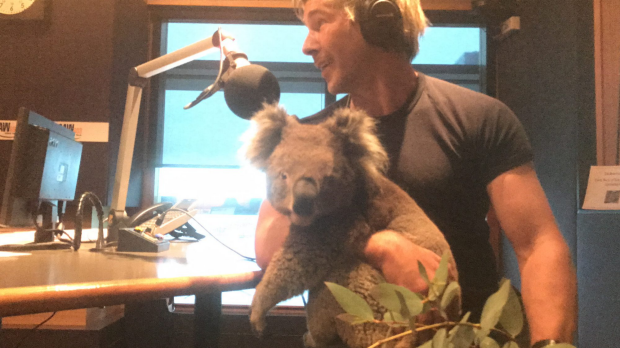 Article image for Chris Humfrey joins Neil Mitchell in the studio with a koala and a snake