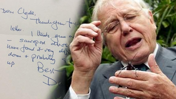Article image for Five-year-old writes a letter to David Attenborough and receives one back