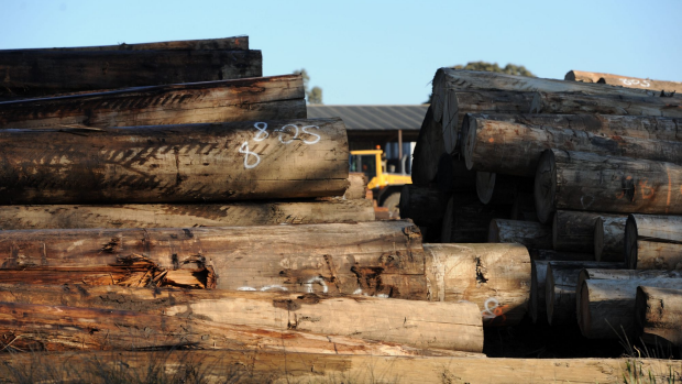Article image for Dozens of logging trucks converge on Melbourne protesting Heyfield Mill closure