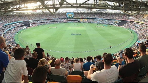 Article image for Independent turf assessor to deliver verdict on Gabba turf