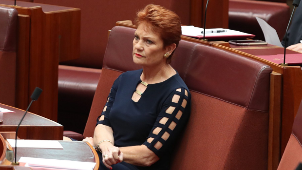 Article image for Hanson's One Nation under investigation over alleged undisclosed donation