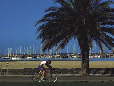 Article image for Should cyclists have speed limits in Melbourne?