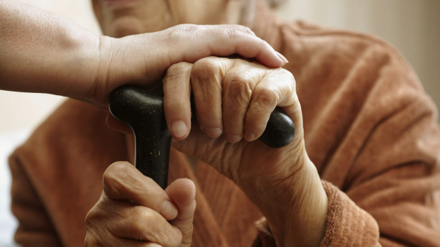 Article image for Grandmothers play a 'key role' in human evolution