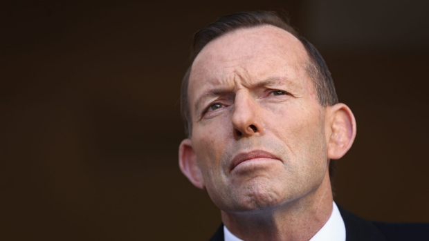 Article image for Tony Abbott's comments comparing ISIL and Nazis 'ridiculous, nonsensical': Tom Elliott