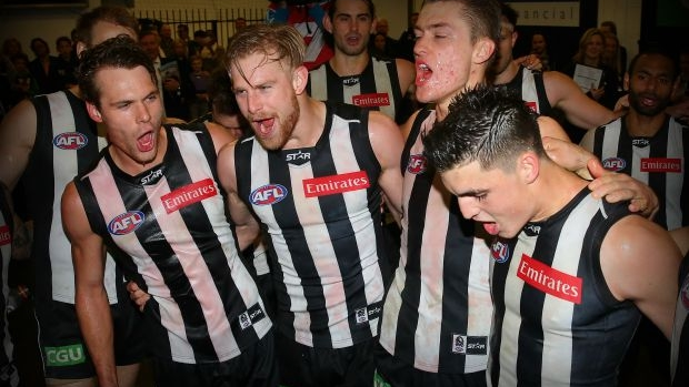 Article image for Collingwood coach Nathan Buckley says Matt Scharenberg wants to stay a Magpie