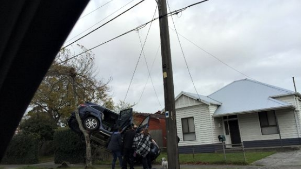 Article image for Ever seen a car up a tree? Bizarre crash at Warrigal Rd, Oakleigh