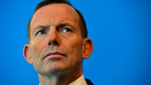 Article image for Tony Abbott a 'terrific' bloke, victim of double standards, says Greg Sheridan