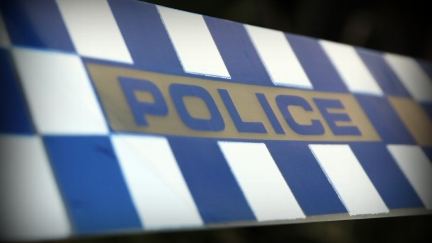 Article image for Police dog too quick for Springvale hoons