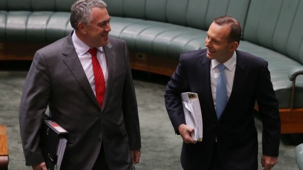 Article image for Supporter of Tony Abbott and Joe Hockey vents frustration over Prime Minister's downfall