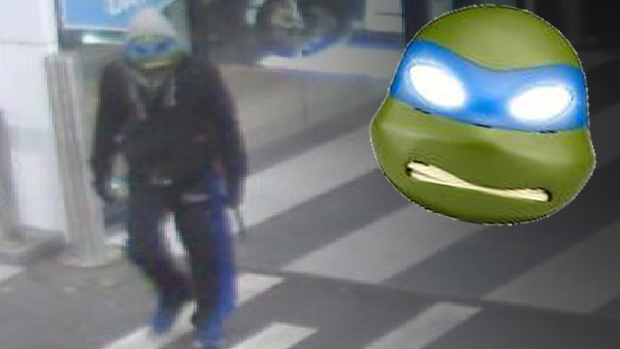 Article image for Teenage Mutant Ninja Turtle robs Doncaster car dealership