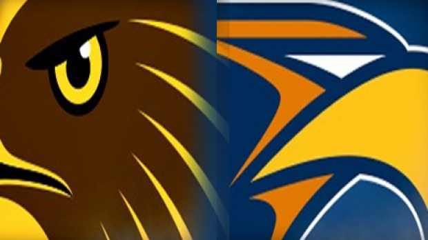 Article image for What would happen if real hawks and eagles fought out the grand final?