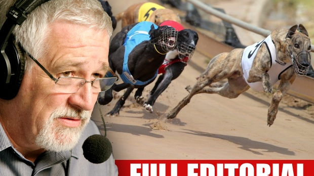 Article image for Time to ban the greyhound racing: Neil Mitchell