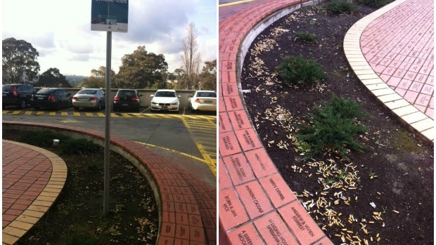 Article image for Austin Hospital garden becomes 'gigantic ashtray'