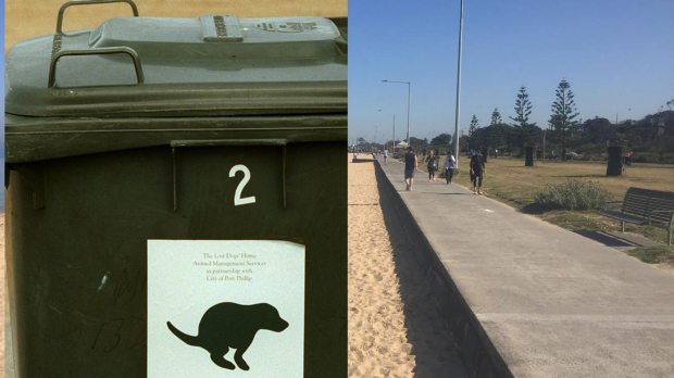 Article image for Your Town: 3AW Drive visits Elwood and finds out about a 'dog poo war'