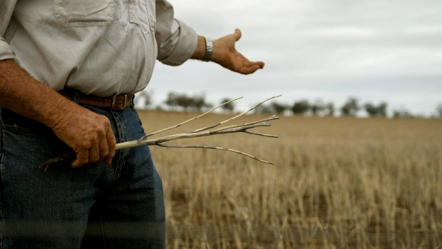 Article image for Farmer Colin gets emotional explaining drought fears to Neil Mitchell