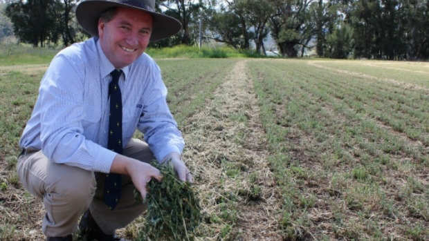 Article image for Barnaby Joyce speaks with a farmer in need on 3AW Mornings