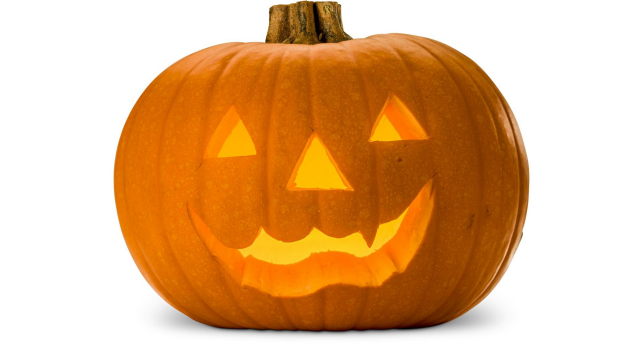 Article image for Inedible pumpkins making big money for Halloween
