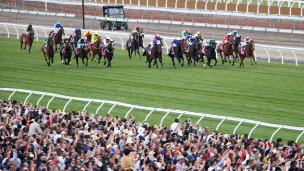 Article image for Melbourne Cup: 10 horses that won't win