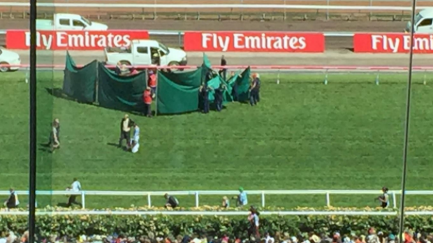 Article image for Red Cadeaux taken to hospital after Melbourne Cup breakdown
