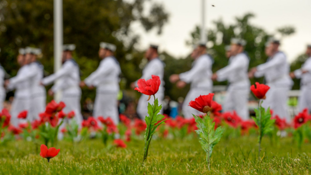 Article image for Remembrance Day 2016: Anniversaries coincide as Australians mark November 11