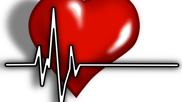 Article image for Ross and John learn why heart disease needs more love