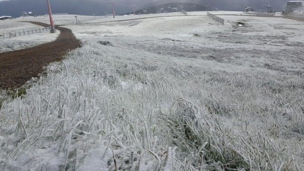 Article image for Snow at Mt Buller on second day of Summer