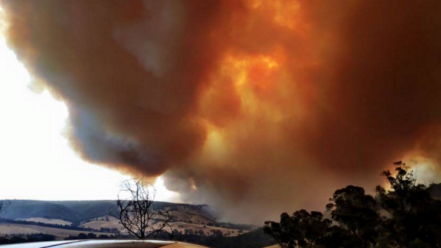 Article image for Fire update: Cross to Wodonga for latest on Yackandandah fire