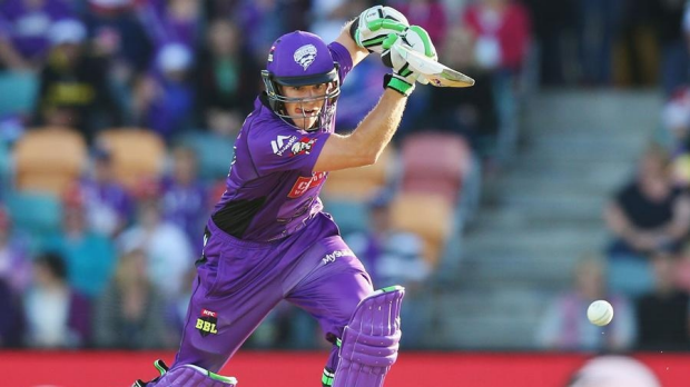 Article image for Captain's knock by Tim Paine helps Hobart Hurricanes blow away Brisbane Heat