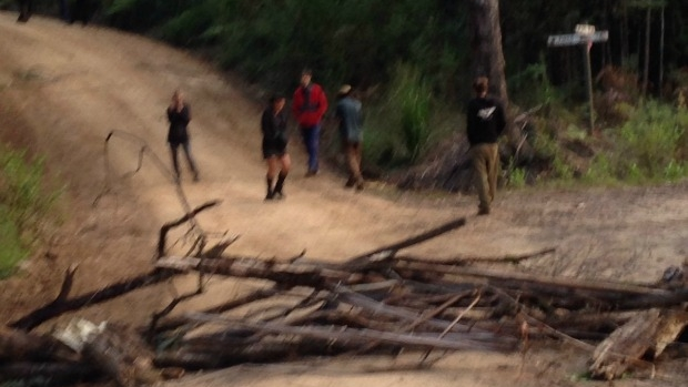 Article image for Protesters blockade timber workers in East Gippsland