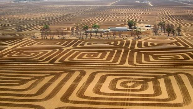Article image for Saving a topsoil a fine art for SA farmer Brian Fischer