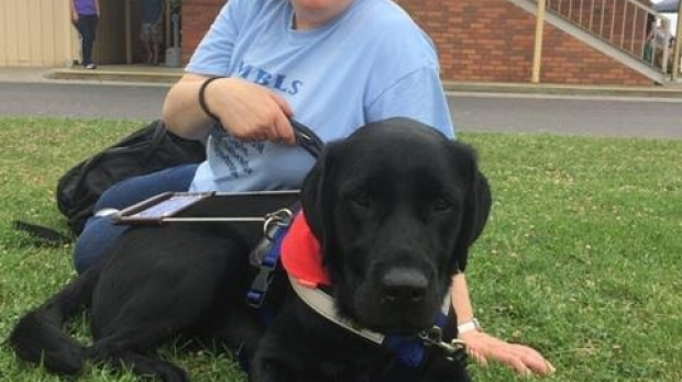 Article image for Seeing eye dog banned from taxi