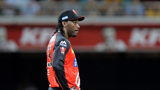 Article image for No decision made yet on Chris Gayle's future in Big Bash League