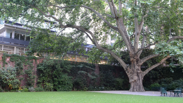 Article image for Open Garden at The Melbourne Club