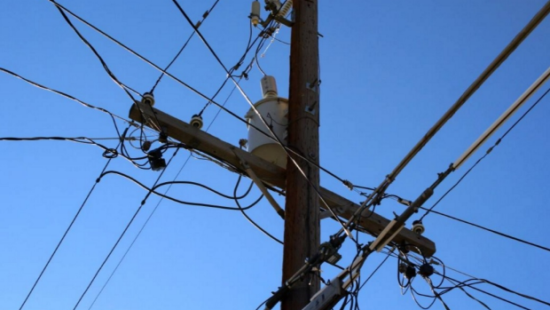 Article image for Teenage girl saves young cousin from being electrocuted at Bellbridge