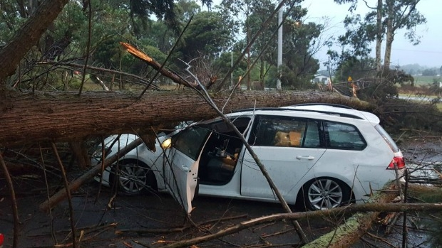 Article image for Wild weather lashes Victoria, severe thunderstorm warnings issued