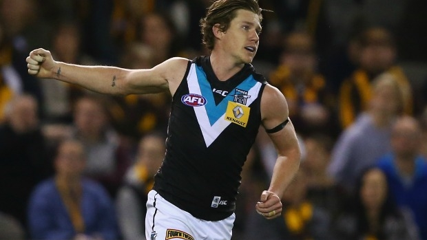 Article image for Matt White tears pectoral muscle, will miss half the AFL season