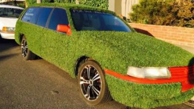 Article image for Unique 'grass car' stolen at Reservoir