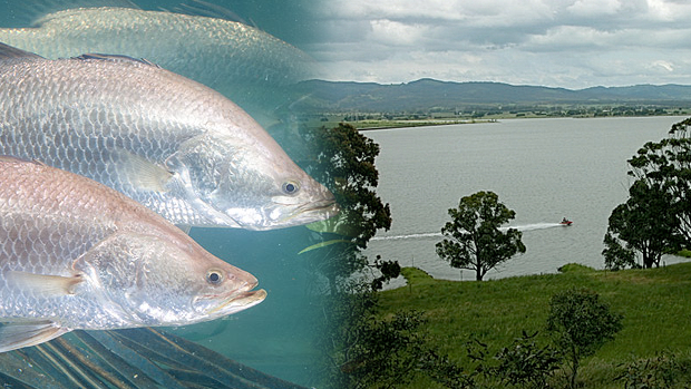 Article image for RUMOUR CONFIRMED: Morwell to become fishing hot spot