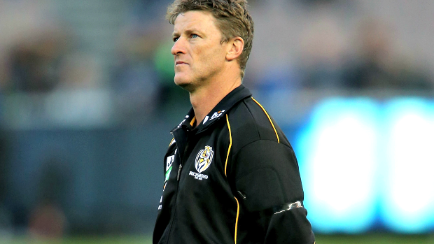 Article image for Damien Hardwick says Richmond wants to 'climb back on the horse'