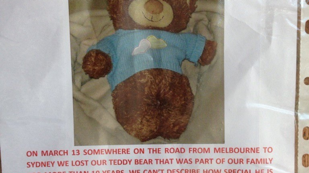 Article image for A $5000 reward has been posted for the return of a missing teddy bear