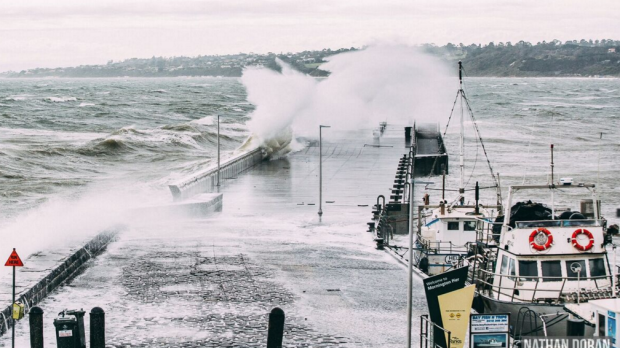 Article image for Victoria lashed by wild weather