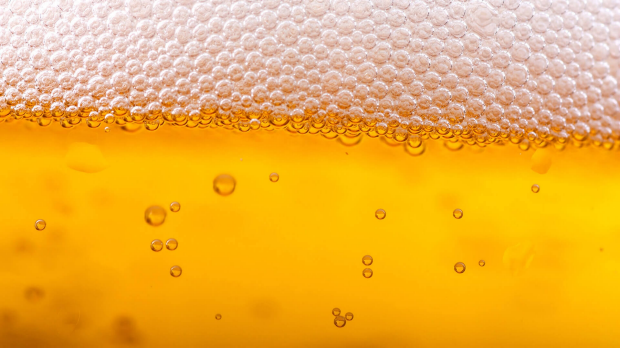 Article image for Drinking beer is good for you says expert on Neil Mitchell's show