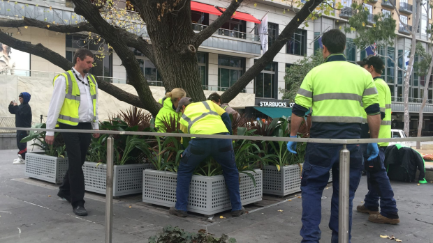 Article image for City Square covered in plants, effectively ending homeless protest