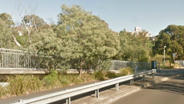 Article image for Cyclist 'hits, abuses' Richmond couple walking on Yarra Boulevard